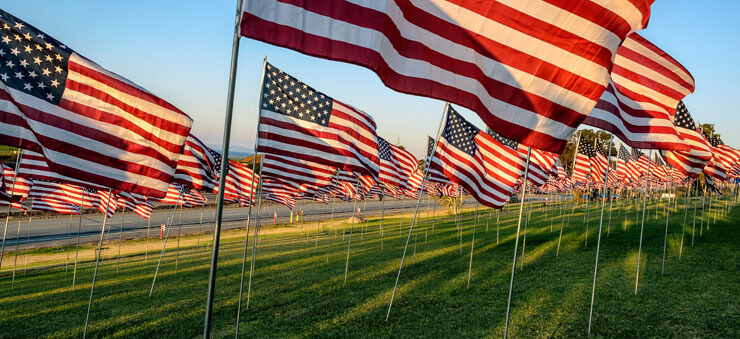 many US flags in a field