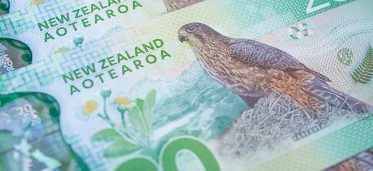NZD money